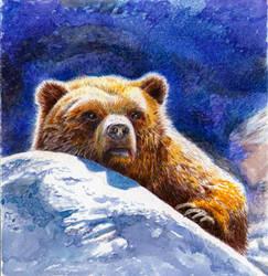 bear by sergzosch