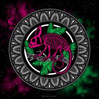 Chameleon in Space by Dana-Ulama