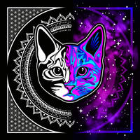 Space Kitty by Dana-Ulama