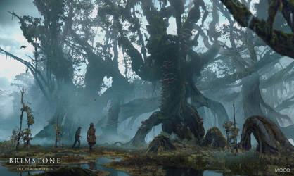 The Mangrove by simonfetscher