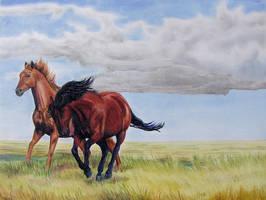 Alberta Spirit by calzephyr