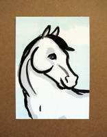 White Horse ACEO by calzephyr