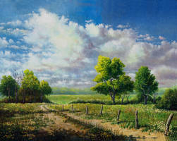 Trail Under Midwestern Skies by DouglasCastleman