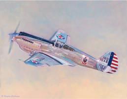 Curtiss P-40C Warhawk by DouglasCastleman