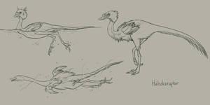 Halszkaraptor study by mrXylax
