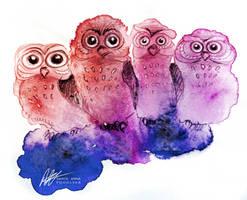 Funny Owls by ISHAWEE