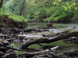 River by KSnake