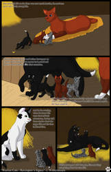 WaCa: Ravenpaw's legacy - Chapter 1 - Page 10 by Winterstream