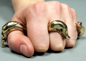 Slug Rings by Maresy