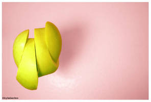 apple slices by kilroyhasbeenhere