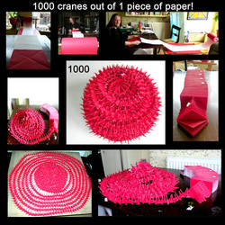 1000 cranes out of 1 by MannaOri