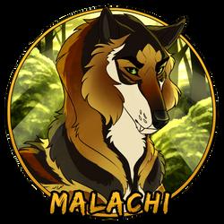 TR | Malachi Medallion by JessieDagger