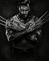 Wolverine by zoshalucyna