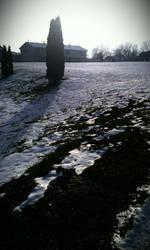 shiney snow2 by SkylarSnapshot