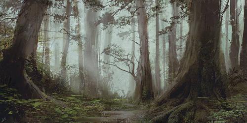 Sketches forest by LLirik-13