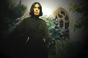 William Snape - My Husband by Vulkanette