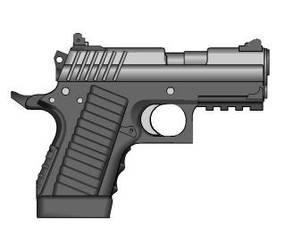 .45 compact Colt by crimsonthunder1995