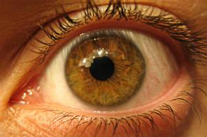Natural Hazel Eye by Z4m0lx3
