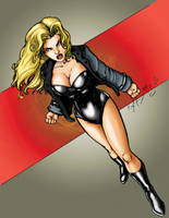 Black Canary - Comfort Love by ChrisShields