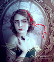 The Story Untold by Celtica-Harmony
