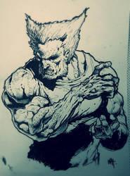 Wolverine by kanartist