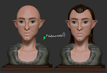 Solas Bust by Padme4000