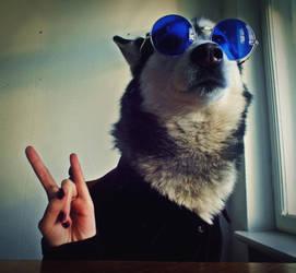 Osbourne dog by CynamoonRessa