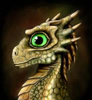 Dragon Baby by Threepwoody