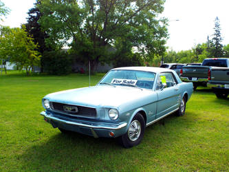 1967 Mustang: Wish I could afford it by lasair44