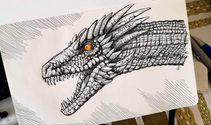 Dragon by Chelidonia