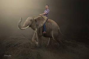 Elephant Ride by hasshasib001