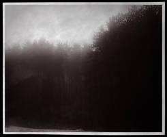 Ghost Forest by ThatArtistFeller