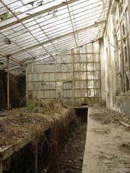 Abandoned Greenhouse II by Kittyd-Stock