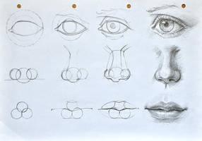 Facial features construction(cyclops tutorial :D) by anotherwanderer