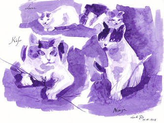 Inktober18 Day11 Cats by LualaDy