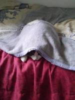 Ooska Under my Blanket #2 by CherokeeGal1975