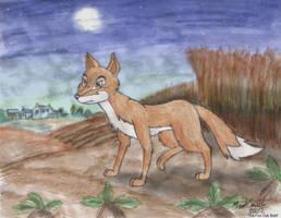 The Fox Cub Bold by FreyFox
