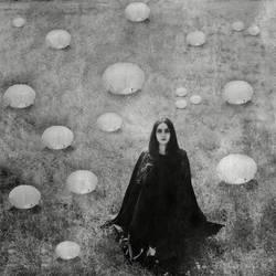 roed field by WonderMilkyGirl