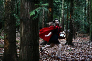Tale of Red Riding Hood III by xessencex