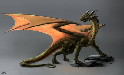 Dragon Concept Art by Rofelrolf