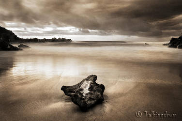 Driftwood by Talkingdrum