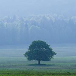 Alone... by MartaC