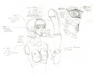 Doll Study by Imperator-Zor