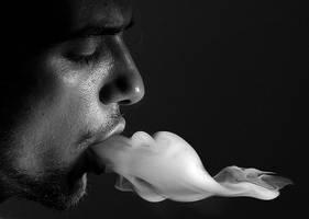 smoke by mbiler