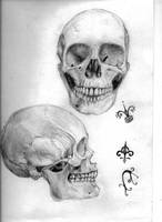 Skulls by loveandasandwich