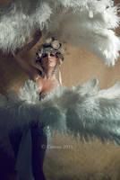the Swan II by cunene