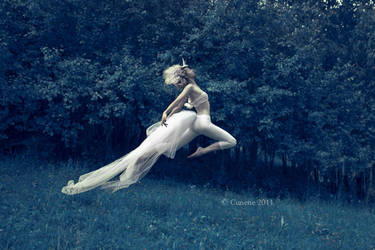 the Unicorn III by cunene