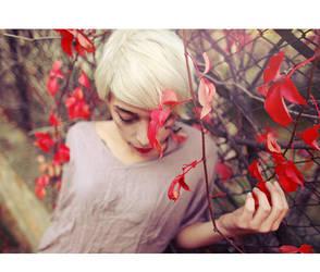 Cherry blossom girl. by arazugur