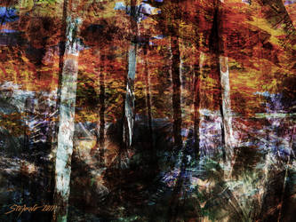 C'est l'automne by raysheaf