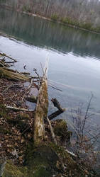 Green Lakes Nov 2015 3 by muffla